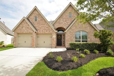 Pearland Single Family Home For Sale: 3617 Spring Heights Court