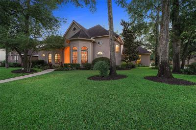 Houston Single Family Home For Sale: 13735 Camelot Centre Court
