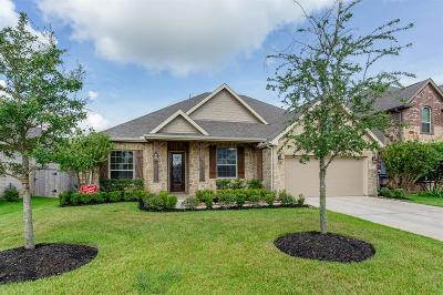 League City Single Family Home For Sale: 2273 Oakleaf Trail Lane