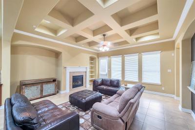 Fulshear Single Family Home For Sale: 6323 Teal Mist Lane