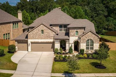 Spring Single Family Home For Sale: 28282 Calaveras Lake Drive