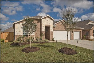 League City Single Family Home For Sale: 2618 Granite Shadow Lane