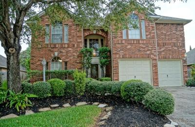 Houston Single Family Home For Sale: 4803 Twisting Road