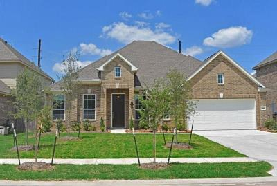 Rosenberg Single Family Home For Sale: 7027 Pearl Terrace Lane