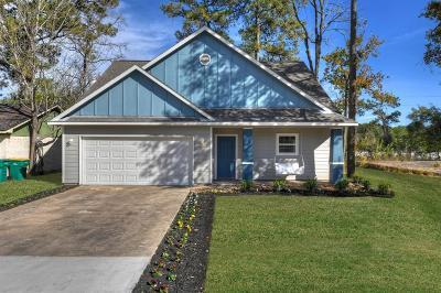 Single Family Home For Sale: 4 Mace Street