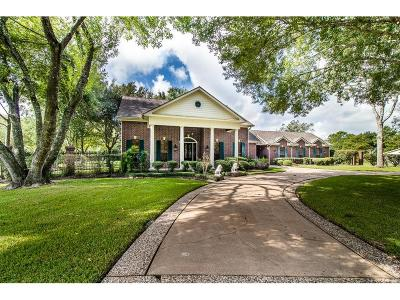 Friendswood Single Family Home For Sale: 927 Layfair Place