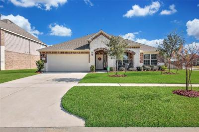 Tomball Single Family Home For Sale: 24502 Raven Cliff Falls Drive