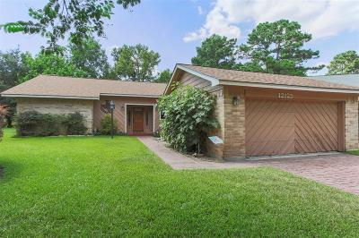 Willis Single Family Home For Sale: 12125 Maverick Drive