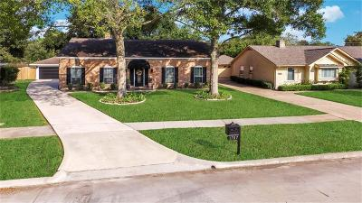 Houston Single Family Home For Sale: 1707 Shannon Valley Drive