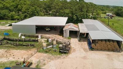 Alvin Single Family Home For Sale: 17308 Auction Barn Road