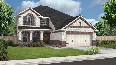 Missouri City Single Family Home For Sale: 3707 Altino Court