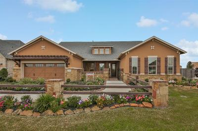 Katy Single Family Home For Sale: 29502 Highland Manor Court