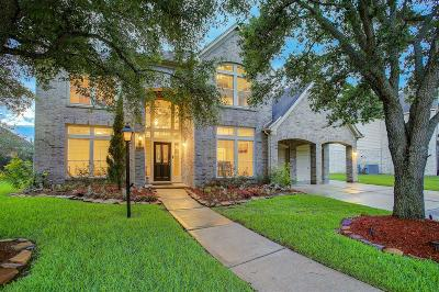 Houston Single Family Home For Sale: 3834 Shadow Trace Circle
