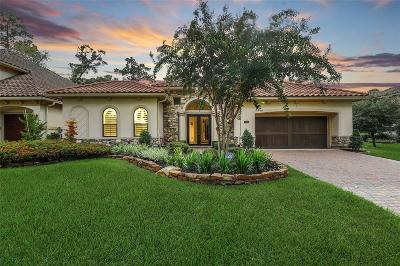 Spring Single Family Home For Sale: 73 Shadow Creek Ridge Drive