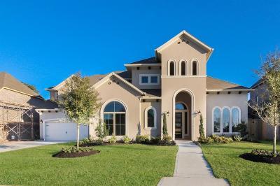Single Family Home For Sale: 12827 S Palomino Lake Circle