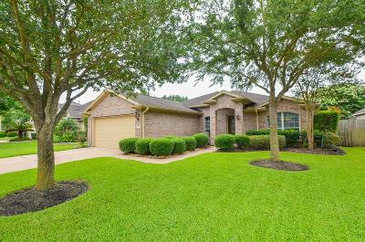 Pearland Single Family Home For Sale: 10104 Forest Spring Lane