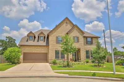 Cypress Single Family Home For Sale: 13203 Rising Bluff Lane