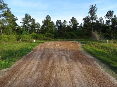 Conroe Farm & Ranch For Sale: 80 Heritage Ranch Road