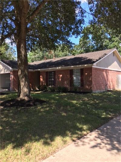 Katy Single Family Home For Sale: 6702 New World Drive