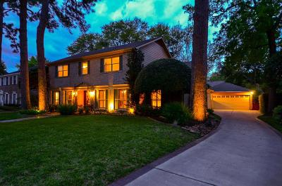 Houston Single Family Home For Sale: 511 Greenpark Drive