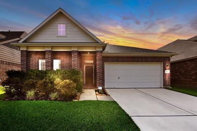 Fort Bend County Single Family Home For Sale: 3327 Retama Falls Lane