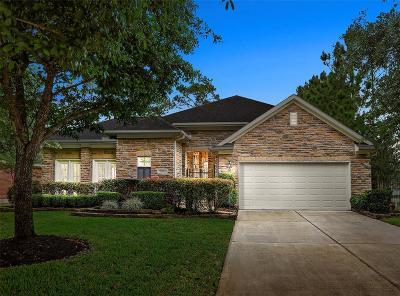 Porter Single Family Home For Sale: 20521 Sable Creek Drive