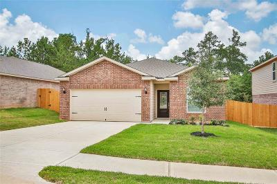Conroe Single Family Home For Sale: 7662 Dragon Pearls Lane