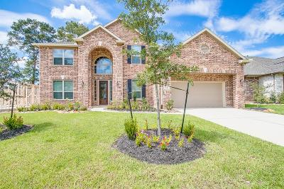 New Caney Single Family Home For Sale: 23318 Hillsview Lane