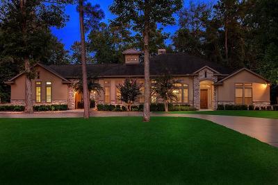 Spring Single Family Home For Sale: 4022 Boden Lane
