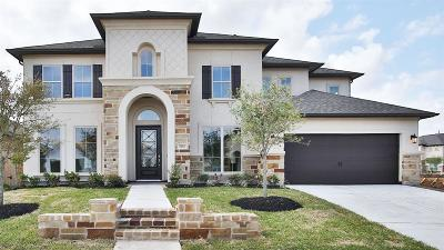 Friendswood Single Family Home For Sale: 804 Galloway Mist Lane
