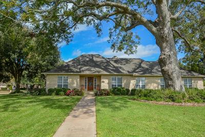 Fulshear Single Family Home For Sale: 33010 Wakefield Court