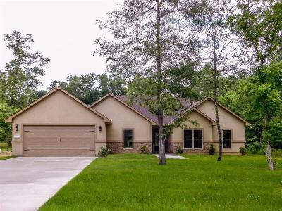 Dayton Single Family Home For Sale: 653 Road 6609