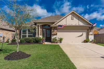 Dickinson Single Family Home For Sale: 6817 Peach Mill Lane