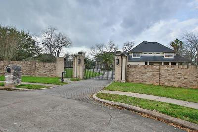 Missouri City Single Family Home For Sale: 1 Lakeside Estate Drive