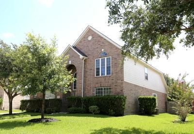 Houston Single Family Home For Sale: 407 Green Stone Court