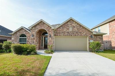 Porter Single Family Home For Sale: 21366 Hubbard Run Drive