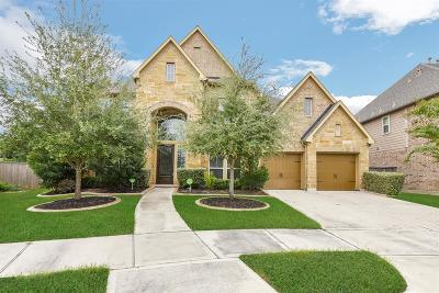 Katy Single Family Home For Sale: 27703 Lodgemist Court