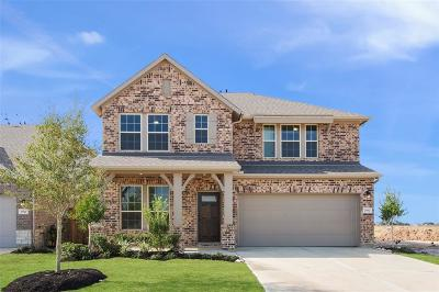 Fort Bend County Single Family Home For Sale: 2902 Torrey Pine Drive