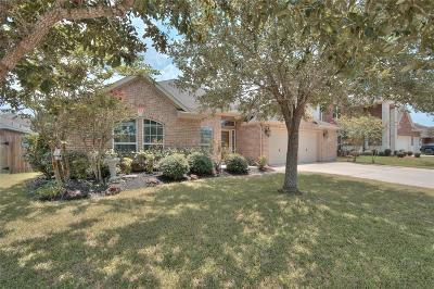 Pearland Single Family Home For Sale: 3601 Sebago Drive