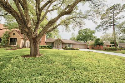 Bellaire Single Family Home For Sale: 5225 Holly Street