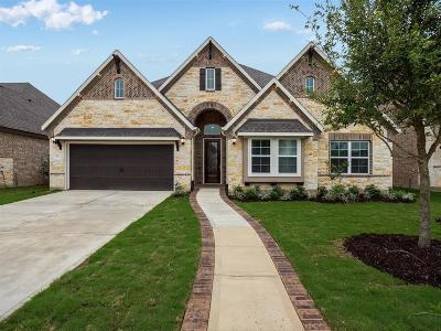 Sugar Land Single Family Home For Sale: 15 Honor Cove