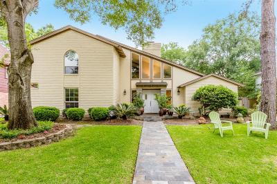 Houston Single Family Home For Sale: 12019 Riverview Drive