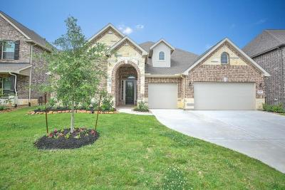 New Caney Single Family Home For Sale: 23427 Elmwood Bend Lane