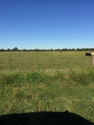 Farm & Ranch For Sale: 0000 Fm 2817