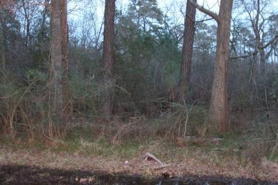 Humble Residential Lots & Land For Sale: 6815 Ackley Drive