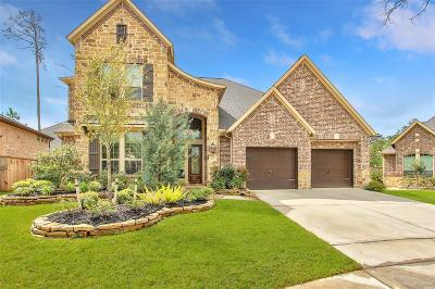 Pinehurst Single Family Home For Sale: 223 Chirping Squirrel Court