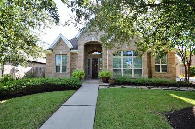 Friendswood Single Family Home For Sale: 112 Anderson Ranch Lane