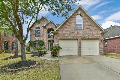 Houston Single Family Home For Sale: 10411 Oleander Point Drive