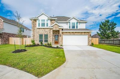 Pearland Single Family Home For Sale: 3615 Gracie Circle