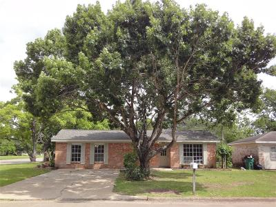 Alvin Single Family Home For Sale: 404 Debbie Lane